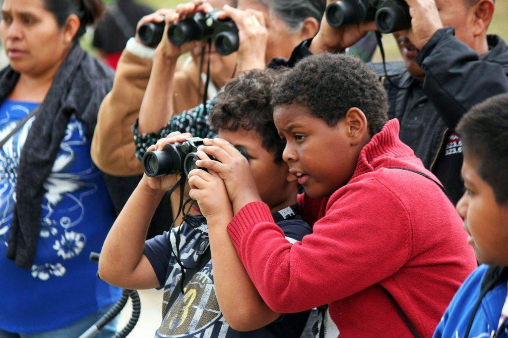 Young Birders at MacArthur Park, Bird LA Day